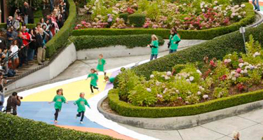 candy_land_on_lombard_street